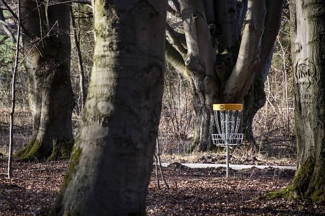 frisbee golf nybörjare